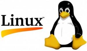 Principais comandos linux
